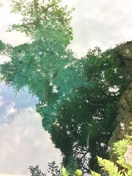 image2_01.JPG